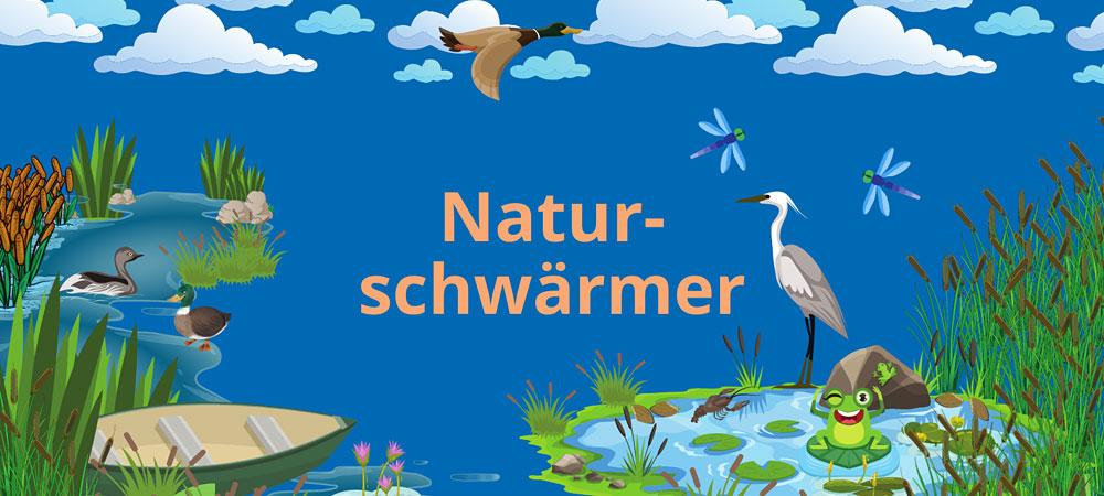 Illustrationen zum Thema Wasser: Teich, Reiher, Frosch, Libellen, Seerosen