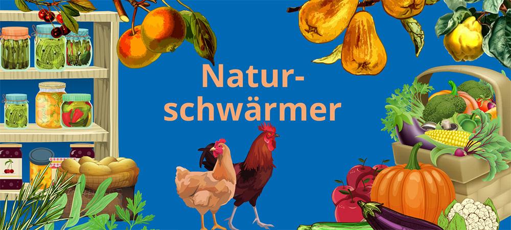 Illustration mit Obst und Gemüse aus dem Garten, Einmachgläsern im Regal und zwei Hühnern