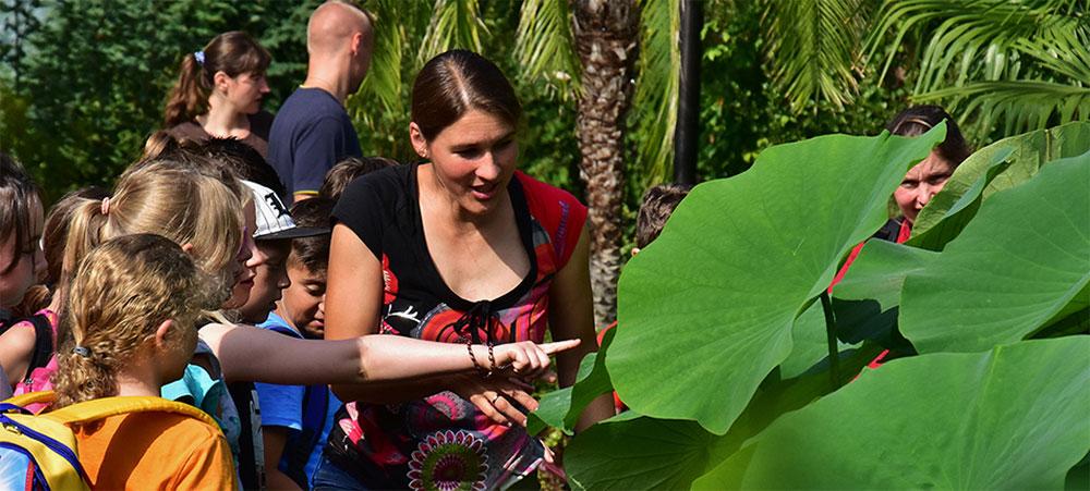 Das Bild zeigt eine Gruppe von Kindern und eine Dame, die den Kindern den Lotoseffekt an einer Pflanze erläutert.